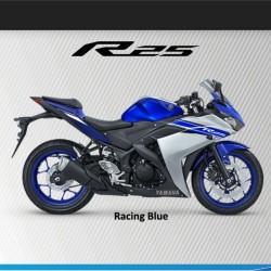 R-25 biru.jpg
